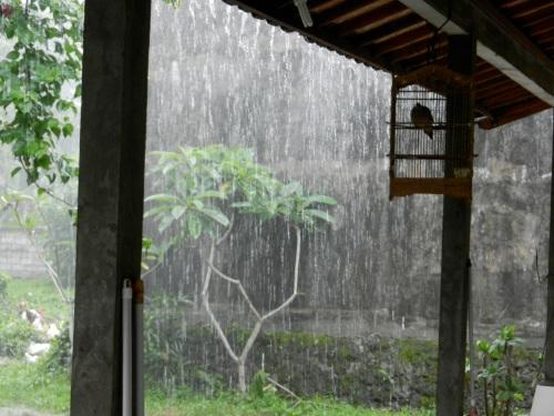 Hujan (Rain)